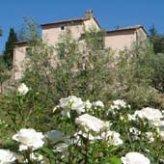 villa rolando tuscany