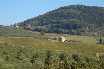 podere pontassieve tuscany