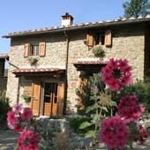 villa olivo tuscany