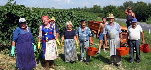 tuscany wine tours